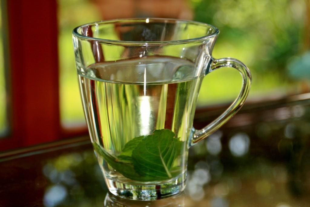 borsmenta tea